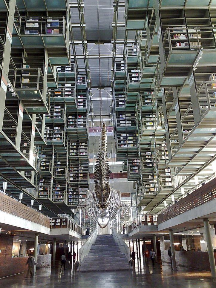 800px-Vasconcelos_library